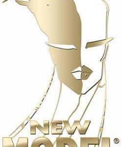 logo new model