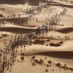 20_Erik Sampers_Marathon des sables